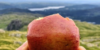 Hand holding apple against Lake District